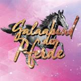 Galaabend Der Pferde - Leer 2018
